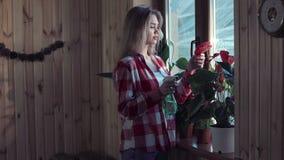 Flores molhando da mulher com uma arma de pulverizador vídeos de arquivo