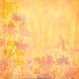 Flores mostradas em silhueta pêssego Foto de Stock Royalty Free