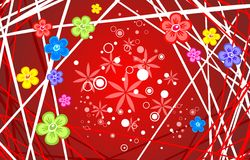 Flores multicoloras Fotos de archivo