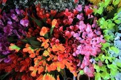 Flores multicoloras Fotografía de archivo libre de regalías