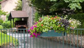 Flores multicoloras en el pote y el watermill suspendidos en el fondo Fotografía de archivo libre de regalías