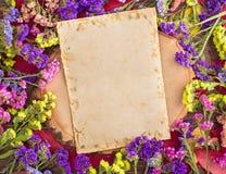 Flores multicoloras secadas del statice alrededor de la tarjeta Fotos de archivo