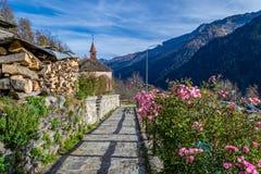 Flores na aldeia da montanha Imagens de Stock Royalty Free