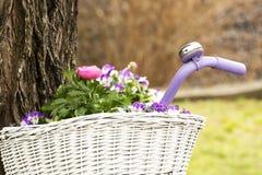 Flores na cesta Imagem de Stock Royalty Free