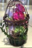 flores na gaiola Fotografia de Stock Royalty Free