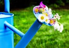 Flores na lata molhando Imagem de Stock