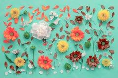 Flores na lona, configuração lisa imagem de stock royalty free