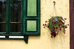 Flores na parede Imagens de Stock Royalty Free