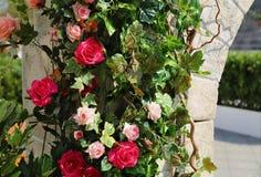 flores na parede Fotos de Stock