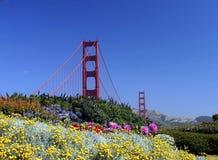 Flores na porta dourada Fotografia de Stock