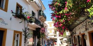 Flores na rua em Grécia fotografia de stock royalty free