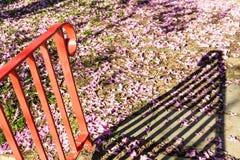 Flores na terra Fotografia de Stock