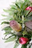 Flores nativas australianas foto de archivo libre de regalías