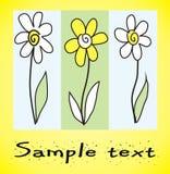 Flores naturais simples ilustração do vetor