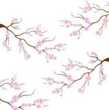 Flores naturales de la cultura japonesa libre illustration