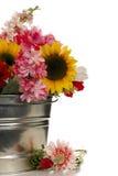 Flores no balde fotos de stock royalty free