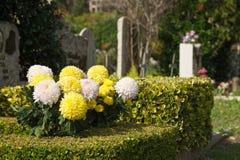 Flores no cemitério Fotos de Stock