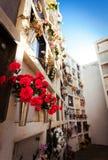 Flores no cemitério nas sepulturas da cremação Imagens de Stock Royalty Free