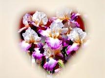 Flores no coração Fotografia de Stock Royalty Free