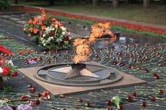 Flores no fogo eterno memorável em Victory Day Rússia Fotografia de Stock Royalty Free