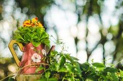 Flores no frasco Imagens de Stock