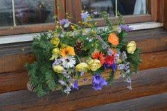Flores no indicador Fotografia de Stock Royalty Free