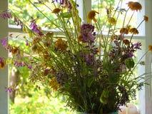 Flores no indicador Close-up fotografia de stock