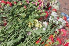 Flores no monumento da guerra Fotos de Stock Royalty Free