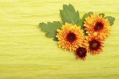 Flores no pano Fotografia de Stock