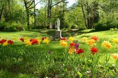 Flores no parque de Pavlovsk fotos de stock
