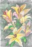 Flores no por do sol ilustração do vetor