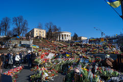 Flores no quadrado da independência em Kiev Ucrânia Imagens de Stock Royalty Free