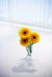 Flores no vaso Fotografia de Stock Royalty Free