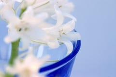 Flores no vidro Imagem de Stock Royalty Free