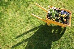 Flores no wheelbarrow fotos de stock royalty free