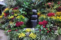 Flores nos jardins Foto de Stock