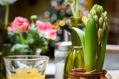 Flores nos vasos de vidro em uma mesa de centro Imagens de Stock Royalty Free