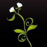 Flores ou diamantes (vetor) Foto de Stock Royalty Free