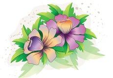 Flores púrpuras con las hojas Fotografía de archivo libre de regalías