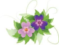 Flores púrpuras con las hojas y los remolinos Foto de archivo libre de regalías