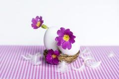 Flores púrpuras en cáscaras de huevo Imagen de archivo