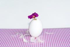 Flores púrpuras en cáscaras de huevo Foto de archivo libre de regalías