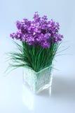 flores púrpuras en un florero de cristal cuadrado Fotografía de archivo