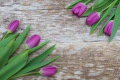 Flores púrpuras frescas del tulipán en la tabla de madera Foto de archivo libre de regalías