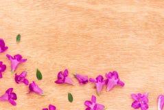 Flores púrpuras hermosas en el fondo de madera Imagen de archivo