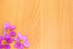 Flores púrpuras hermosas que florecen en el fondo de madera Foto de archivo