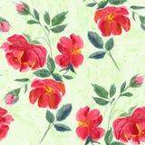 Flores Papel de parede abstrato com motivos florais Alinhador longitudinal sem emenda Imagens de Stock