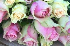 Flores para el día de las tarjetas del día de San Valentín o de madres imagenes de archivo