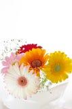 Flores para la tabla Fotos de archivo