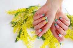 Flores para o dia das mulheres internacionais Imagem de Stock Royalty Free